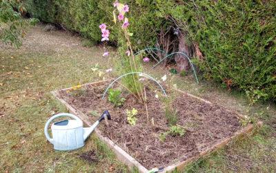 Au jardin chez Marie-Paule
